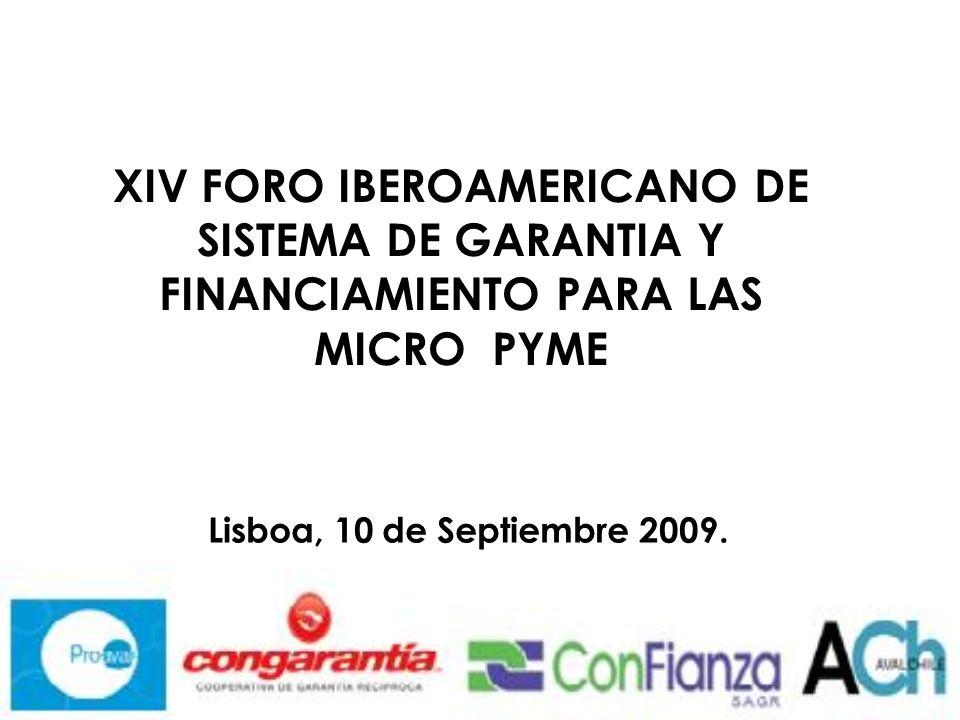 XIV FORO IBEROAMERICANO DE SISTEMA DE GARANTIA Y FINANCIAMIENTO PARA LAS MICRO PYME Lisboa, 10 de Septiembre 2009.