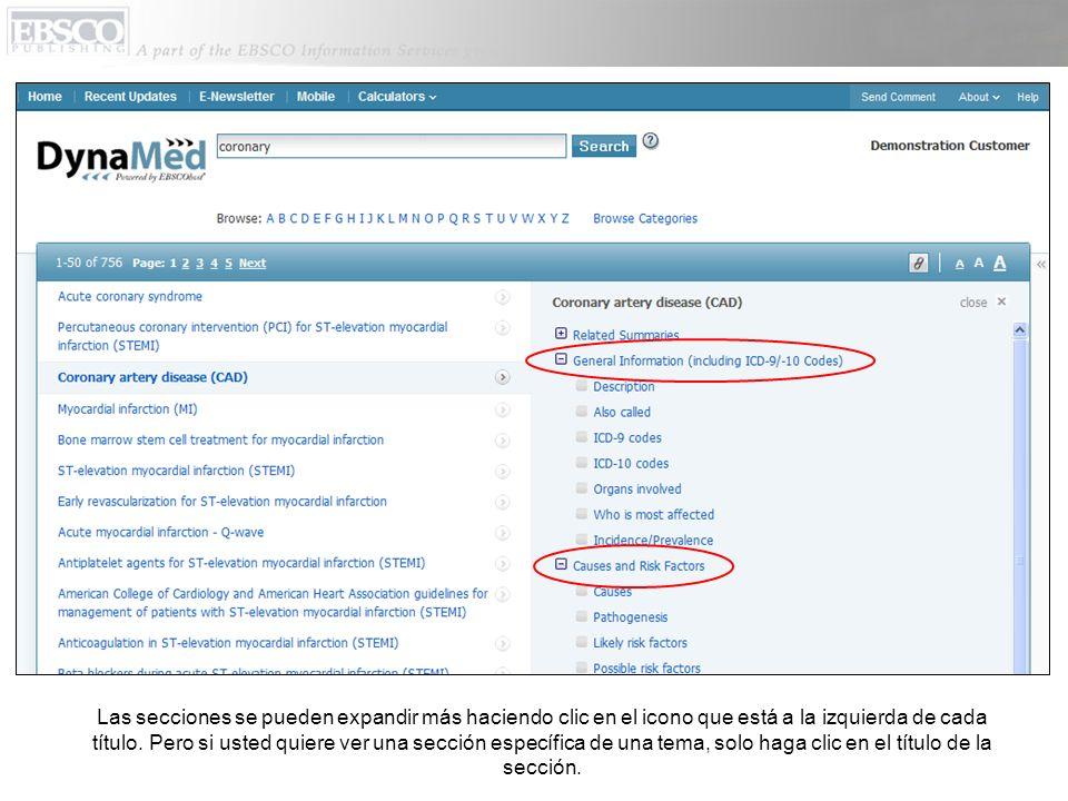 Las secciones se pueden expandir más haciendo clic en el icono que está a la izquierda de cada título.
