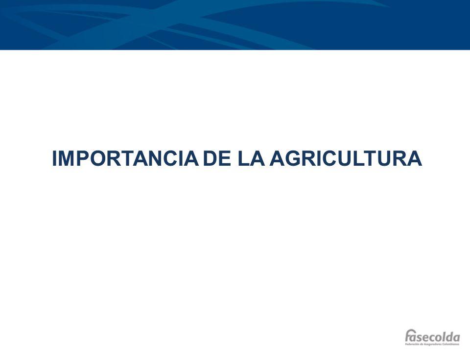 La importancia de la agricultura El peso del sector agropecuario ha disminuido en la última década, perdiendo terreno frente a sectores como la construcción.