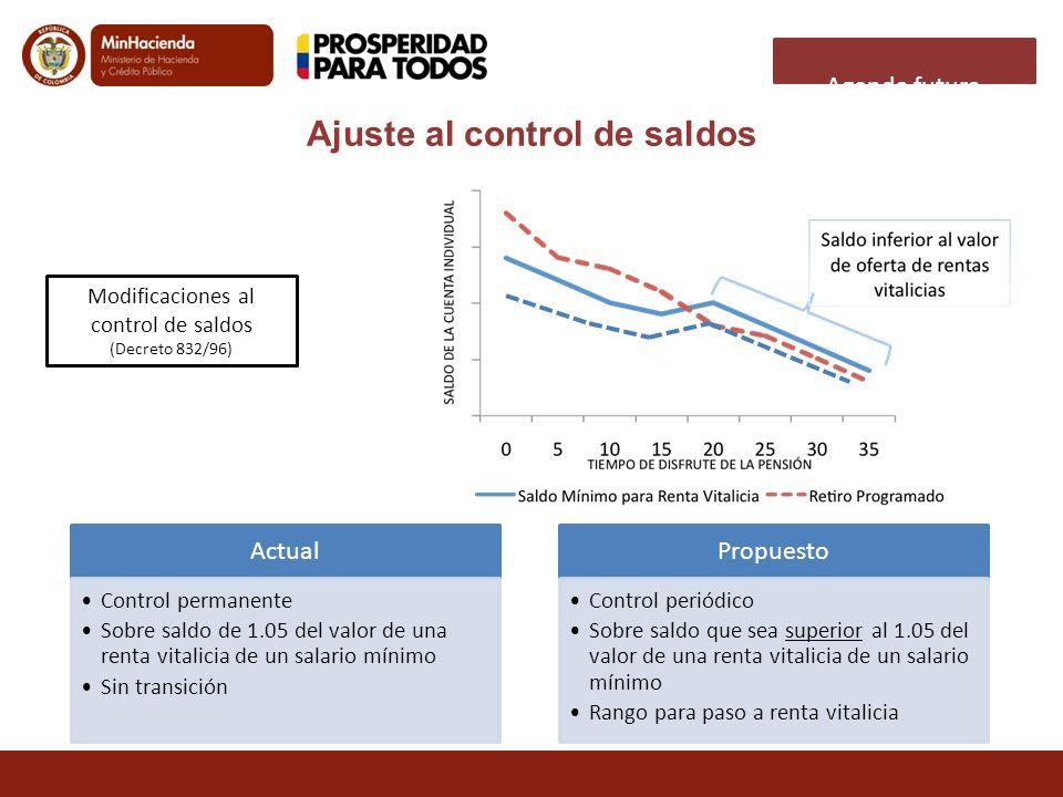 Agenda futura Ajuste al control de saldos Modificaciones al control de saldos (Decreto 832/96) Actual Control permanente Sobre saldo de 1.05 del valor