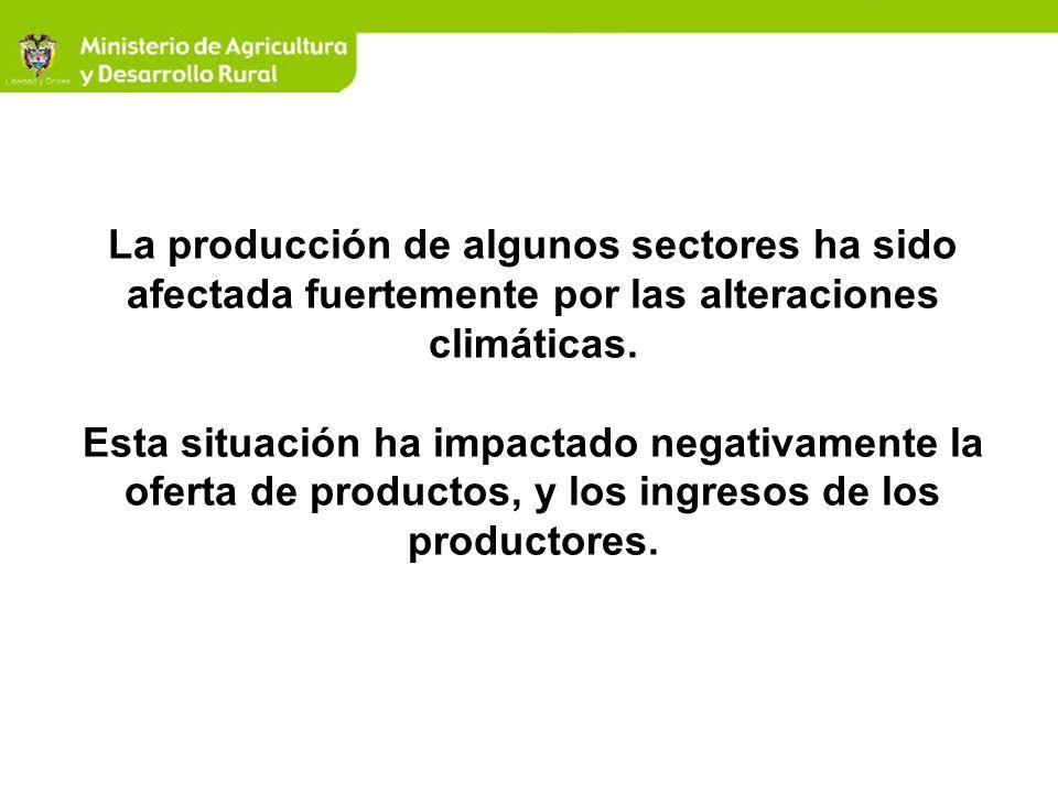 La producción de algunos sectores ha sido afectada fuertemente por las alteraciones climáticas. Esta situación ha impactado negativamente la oferta de