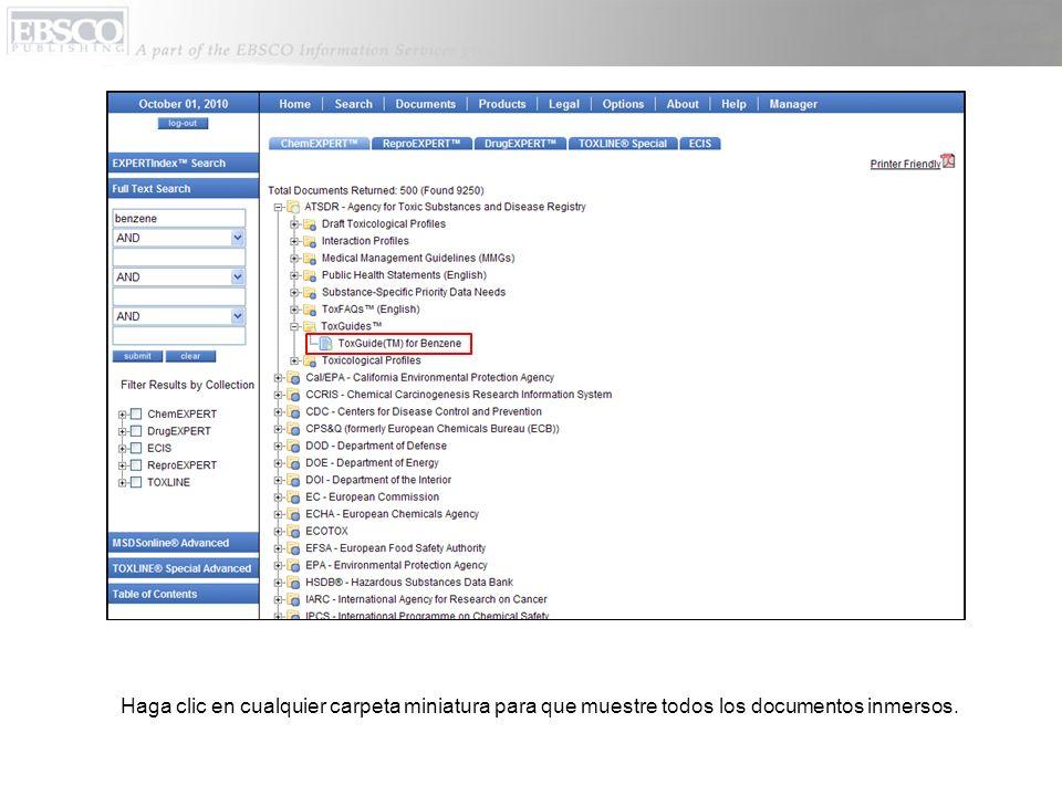 Haga clic en cualquier carpeta miniatura para que muestre todos los documentos inmersos.