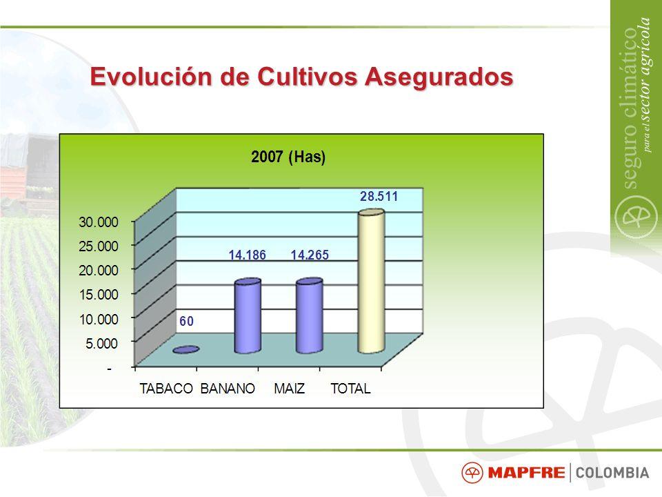Evolución de Cultivos Asegurados