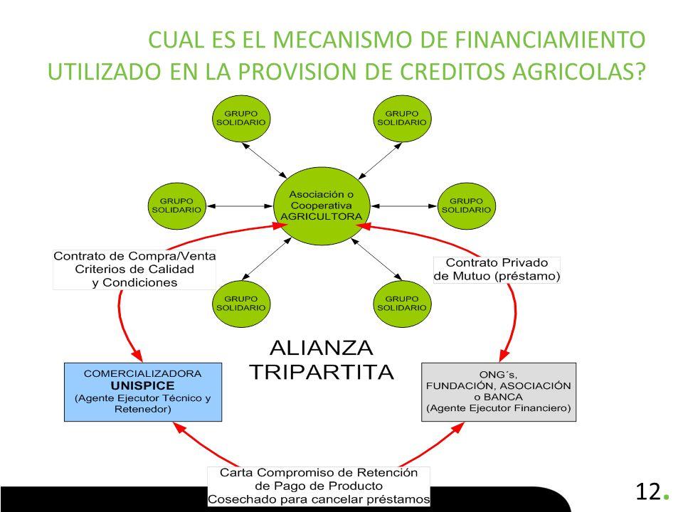 12. CUAL ES EL MECANISMO DE FINANCIAMIENTO UTILIZADO EN LA PROVISION DE CREDITOS AGRICOLAS?