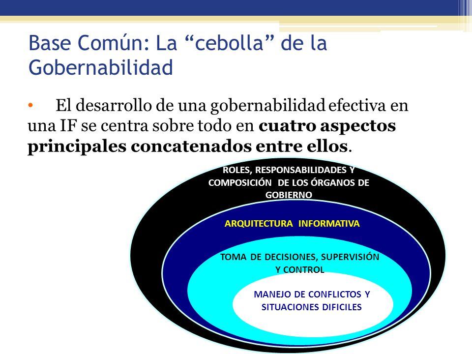 48 Base Común: La cebolla de la Gobernabilidad El desarrollo de una gobernabilidad efectiva en una IF se centra sobre todo en cuatro aspectos principa