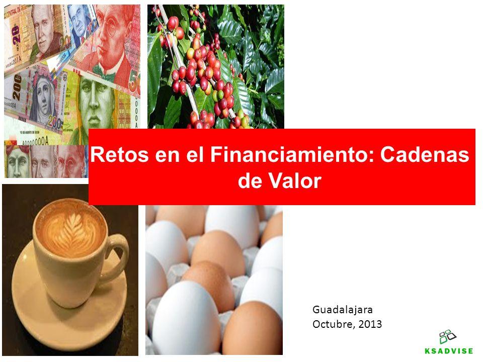 Guadalajara Octubre, 2013 Retos en el Financiamiento: Cadenas de Valor
