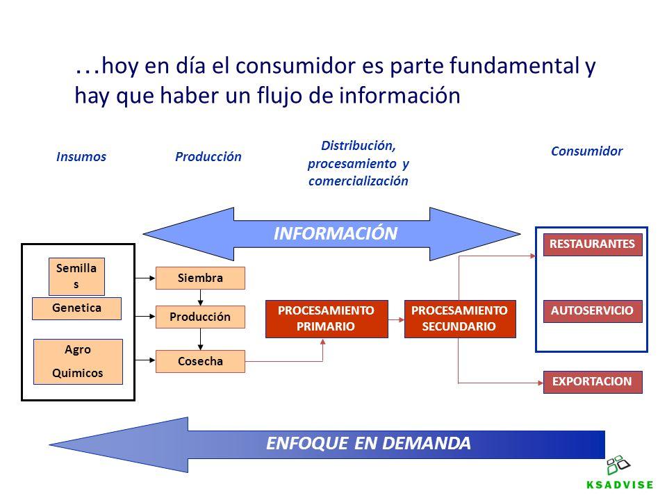Semilla s Genetica Agro Quimicos Producción Cosecha PROCESAMIENTO PRIMARIO PROCESAMIENTO SECUNDARIO RESTAURANTES AUTOSERVICIO EXPORTACION Consumidor P
