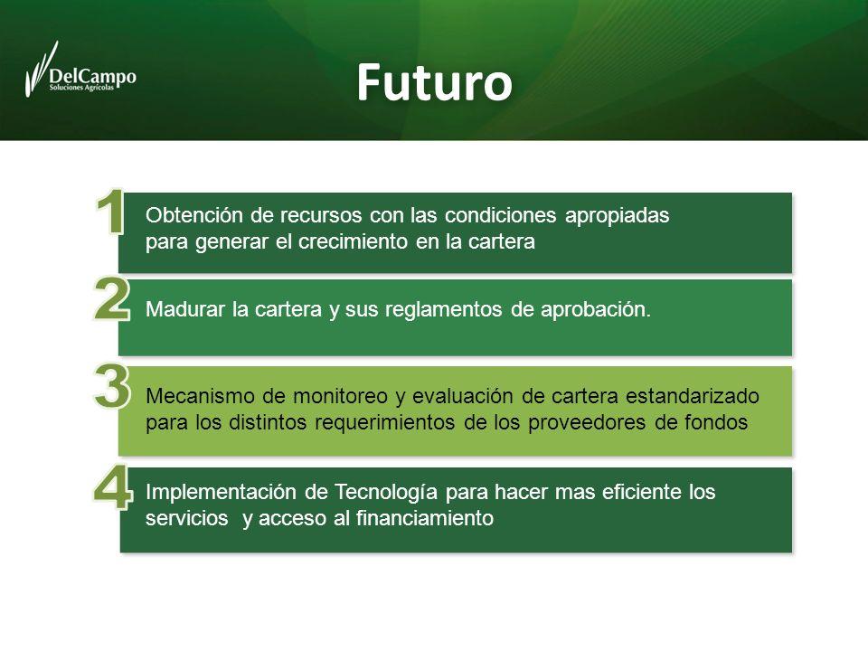Futuro Obtención de recursos con las condiciones apropiadas para generar el crecimiento en la cartera Madurar la cartera y sus reglamentos de aprobación.