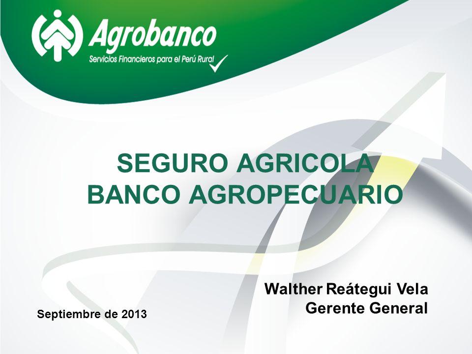 SEGURO AGRICOLA BANCO AGROPECUARIO Septiembre de 2013 Walther Reátegui Vela Gerente General