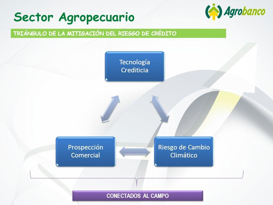 TRIÁNGULO DE LA MITIGACIÓN DEL RIESGO DE CRÉDITO Sector Agropecuario CONECTADOS AL CAMPO