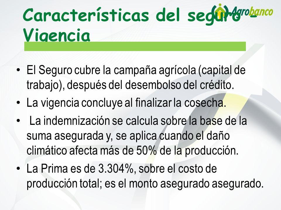 Características del seguro - Vigencia El Seguro cubre la campaña agrícola (capital de trabajo), después del desembolso del crédito. La vigencia conclu