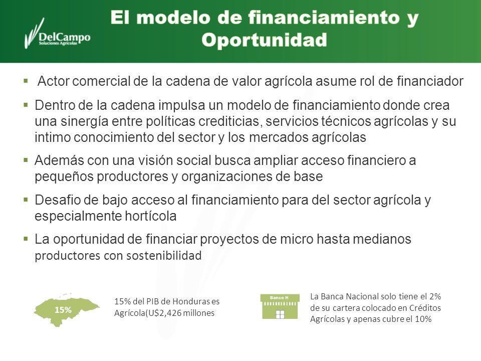 Actor comercial de la cadena de valor agrícola asume rol de financiador Dentro de la cadena impulsa un modelo de financiamiento donde crea una sinergí
