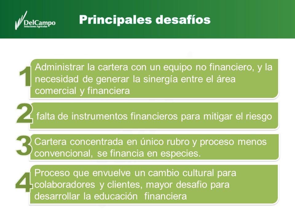 Administrar la cartera con un equipo no financiero, y la necesidad de generar la sinergía entre el área comercial y financiera falta de instrumentos f