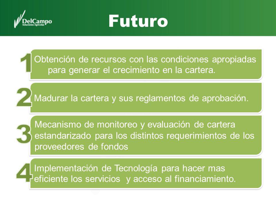 Futuro Obtención de recursos con las condiciones apropiadas para generar el crecimiento en la cartera. Madurar la cartera y sus reglamentos de aprobac