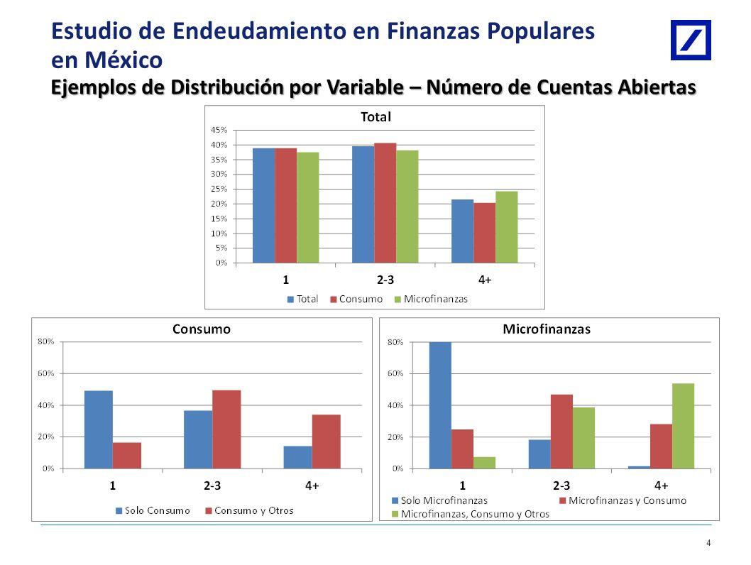 Deutsche Bank 3 1/8/2014 10:28:09 AM2010 DB Blue template Estudio de Endeudamiento en Finanzas Populares en México Cuestionario Secciones Filtro de In