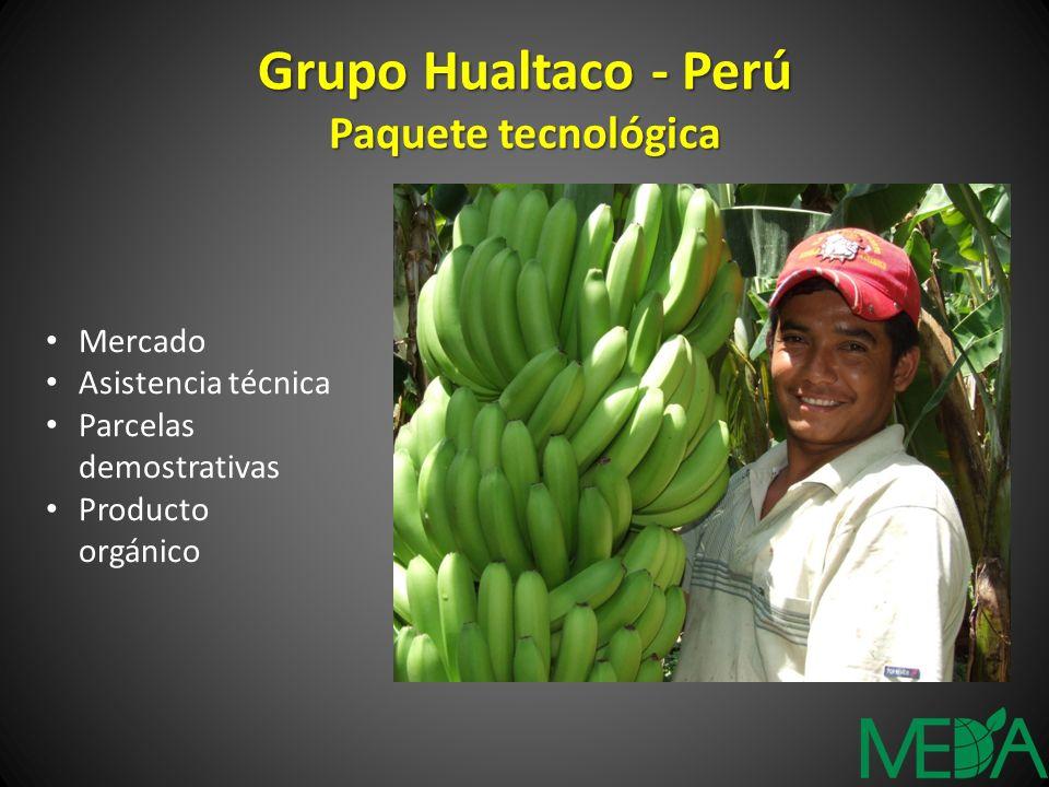 Grupo Hualtaco - Perú Paquete tecnológica Mercado Asistencia técnica Parcelas demostrativas Producto orgánico