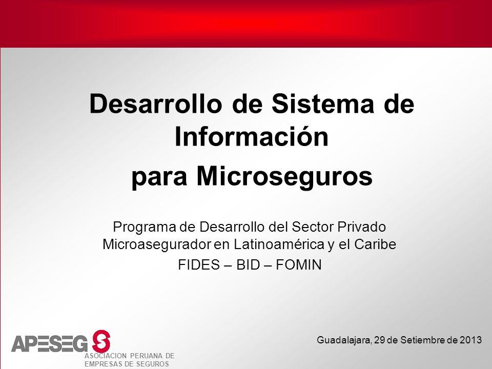 ASOCIACION PERUANA DE EMPRESAS DE SEGUROS Guadalajara, 29 de Setiembre de 2013 Desarrollo de Sistema de Información para Microseguros Programa de Desa