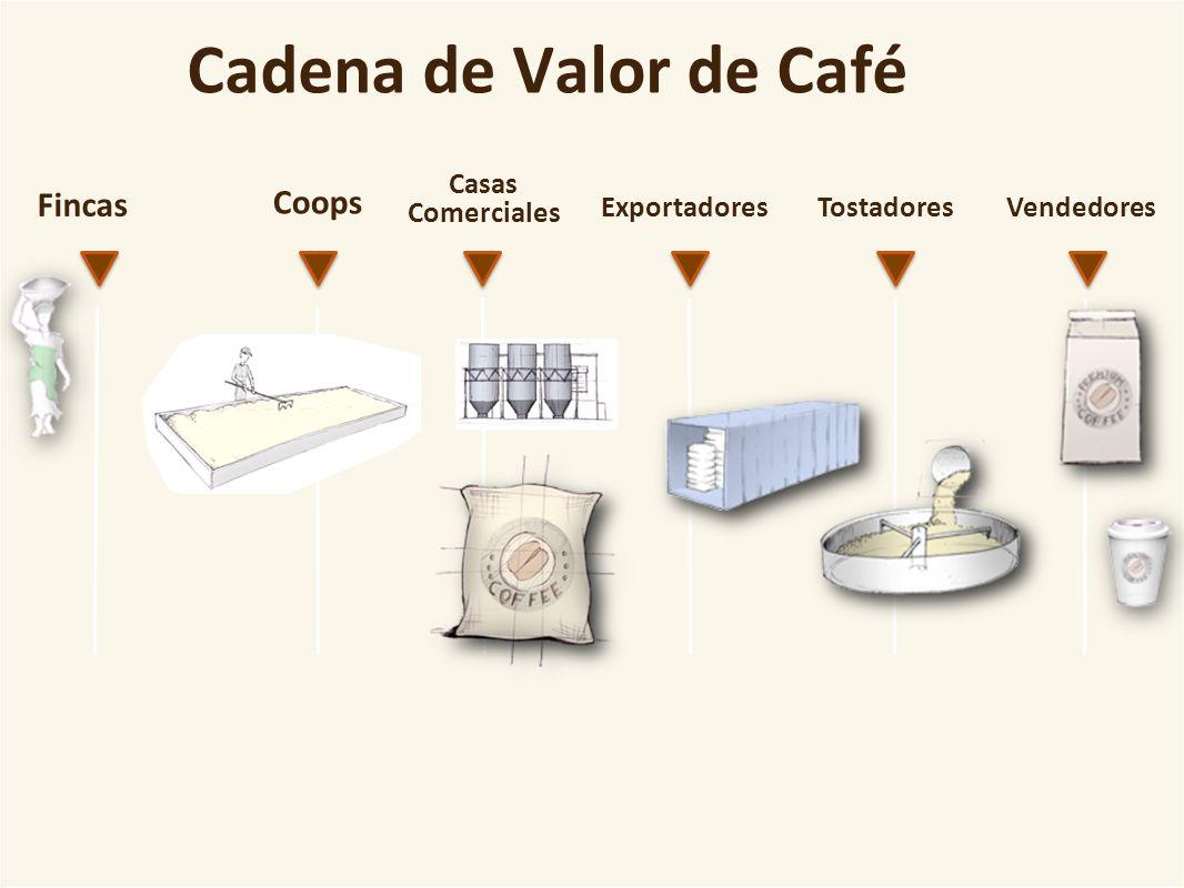 Cadena de Valor de Café Fincas Coops Exportadores Casas Comerciales TostadoresVendedores