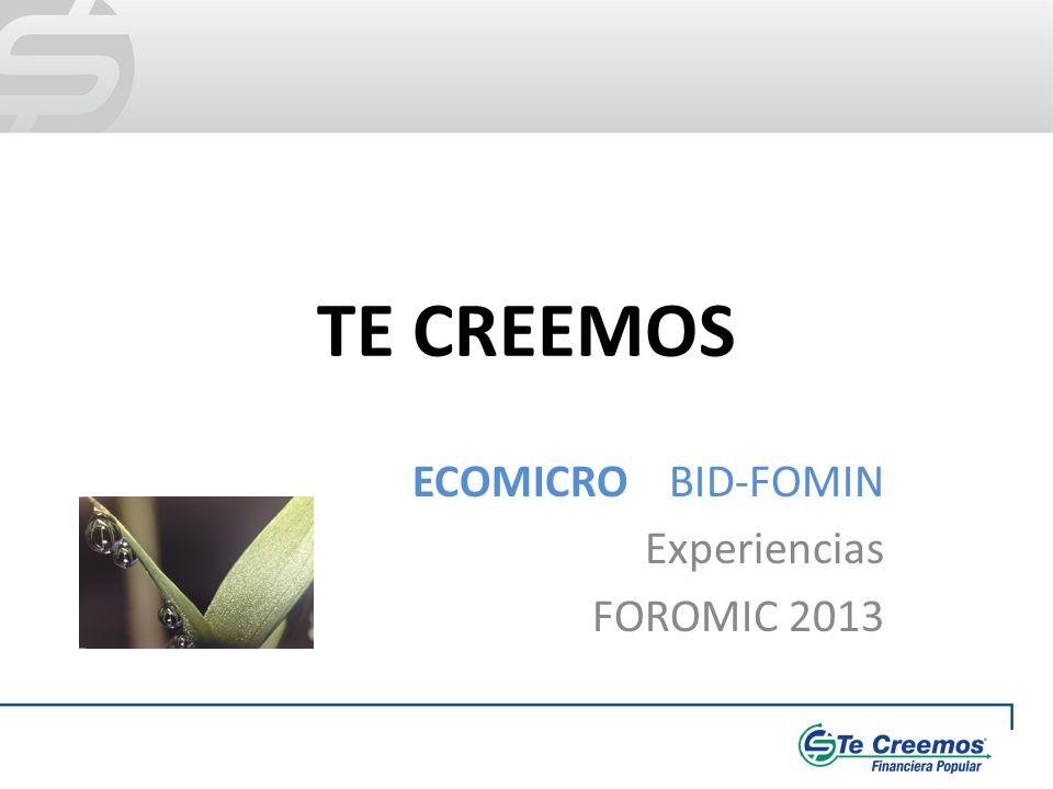 TE CREEMOS ECOMICRO BID-FOMIN Experiencias FOROMIC 2013