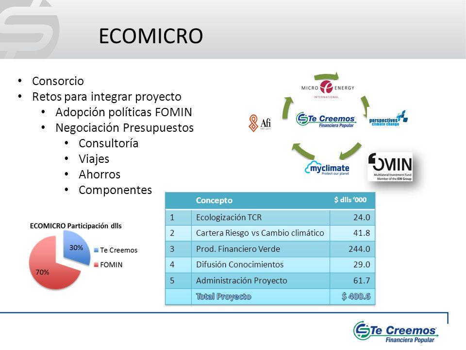 ECOMICRO Consorcio Retos para integrar proyecto Adopción políticas FOMIN Negociación Presupuestos Consultoría Viajes Ahorros Componentes
