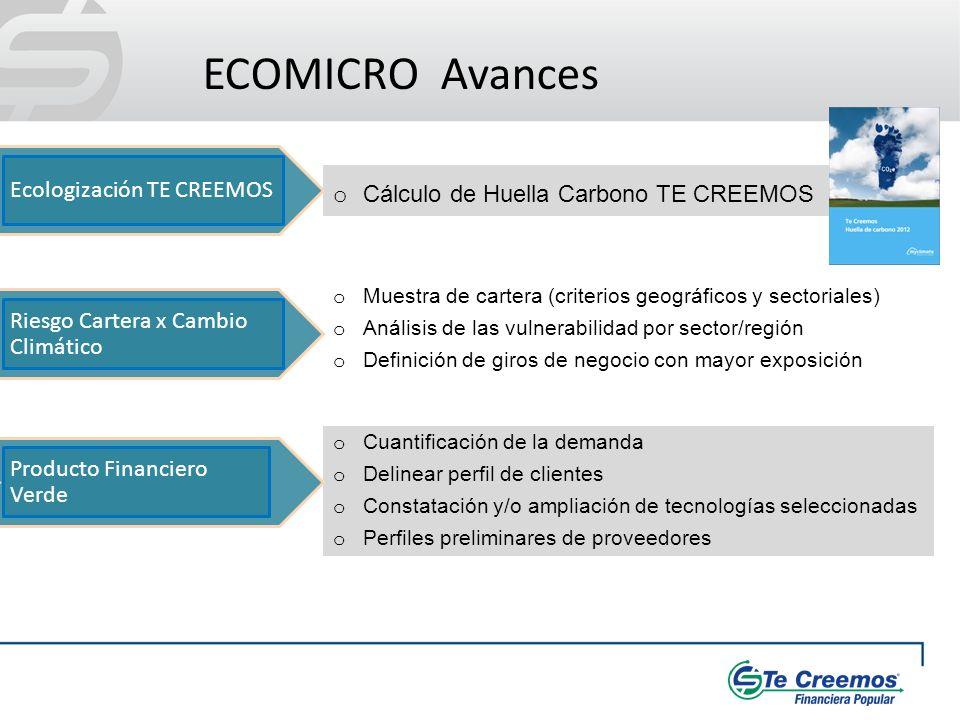 o Cálculo de Huella Carbono TE CREEMOS ECOMICRO Avances o Cuantificación de la demanda o Delinear perfil de clientes o Constatación y/o ampliación de
