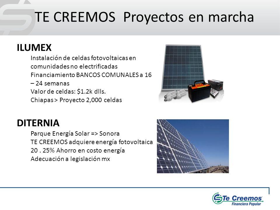 TE CREEMOS Proyectos en marcha ILUMEX Instalación de celdas fotovoltaicas en comunidades no electrificadas Financiamiento BANCOS COMUNALES a 16 – 24 s