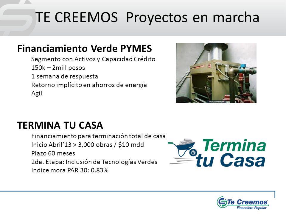 TE CREEMOS Proyectos en marcha Financiamiento Verde PYMES Segmento con Activos y Capacidad Crédito 150k – 2mill pesos 1 semana de respuesta Retorno im