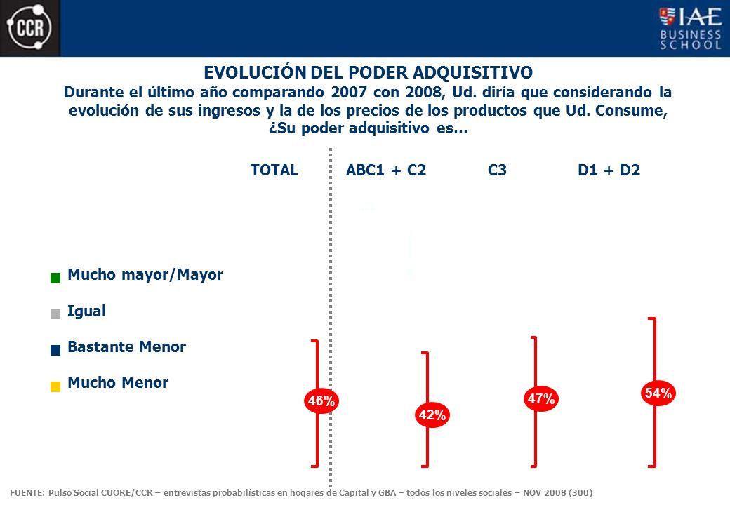 EVOLUCIÓN DEL PODER ADQUISITIVO Mucho mayor/Mayor Igual Bastante Menor Mucho Menor Durante el último año comparando 2007 con 2008, Ud.
