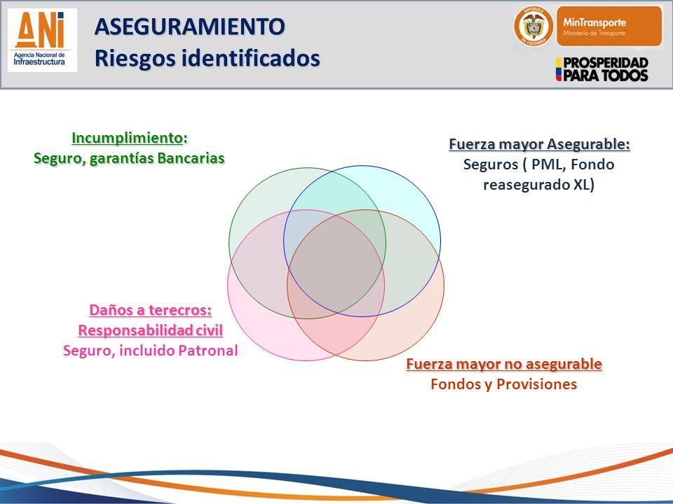 ASEGURAMIENTO Riesgos identificados Incumplimiento: Seguro, garantías Bancarias Fuerza mayor Asegurable: Seguros ( PML, Fondo reasegurado XL) Daños a
