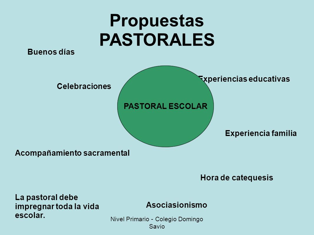 Propuestas PASTORALES Buenos días Experiencias educativas Experiencia familia Celebraciones Hora de catequesis Acompañamiento sacramental PASTORAL ESCOLAR Asociasionismo La pastoral debe impregnar toda la vida escolar.