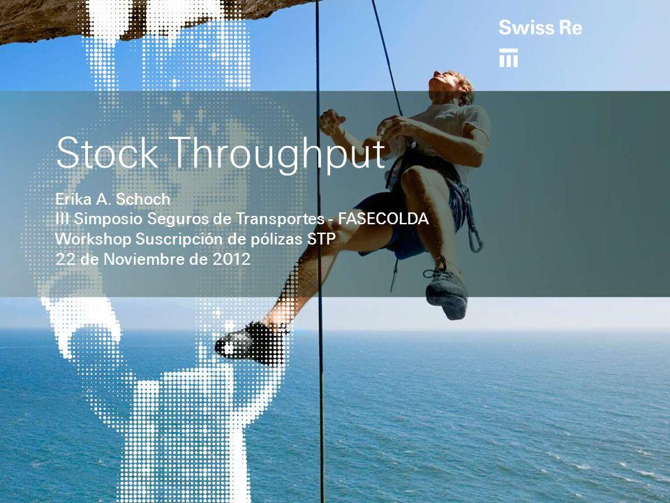 Stock Throughput Erika A.