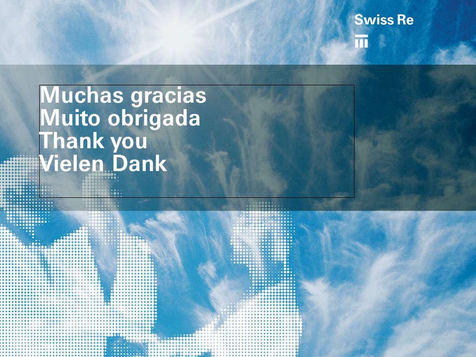 Muchas gracias Muito obrigada Thank you Vielen Dank a