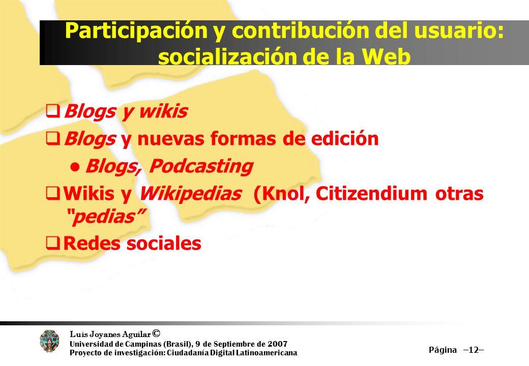 Luis Joyanes Aguilar © Universidad de Campinas (Brasil), 9 de Septiembre de 2007 Proyecto de investigación: Ciudadanía Digital Latinoamericana Partici