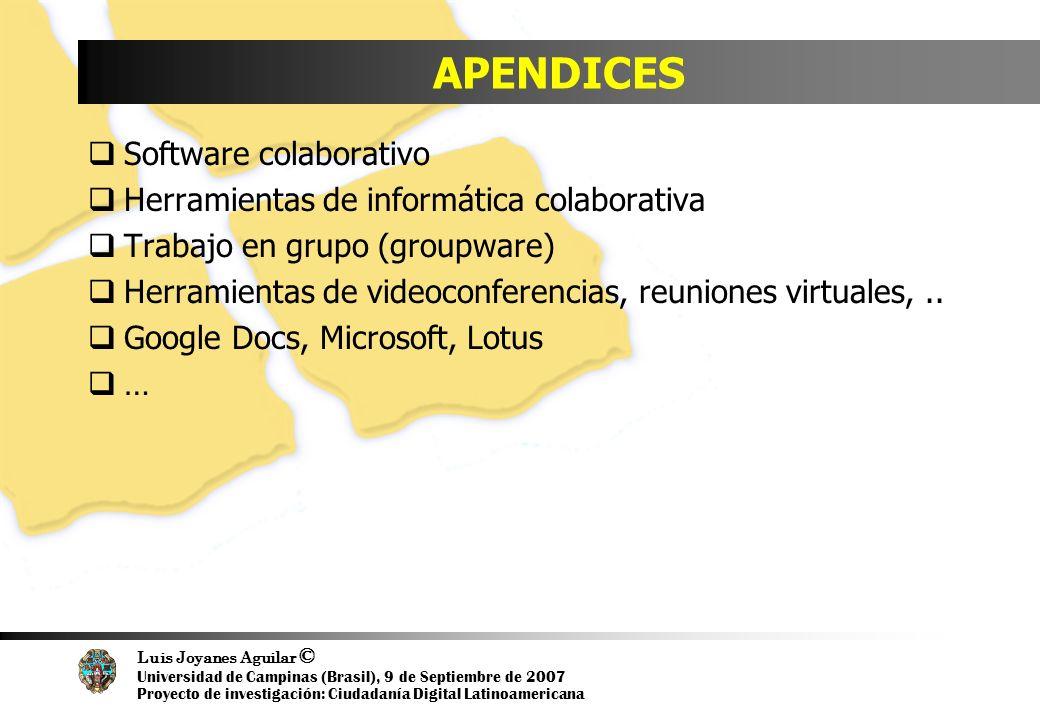Luis Joyanes Aguilar © Universidad de Campinas (Brasil), 9 de Septiembre de 2007 Proyecto de investigación: Ciudadanía Digital Latinoamericana APENDIC