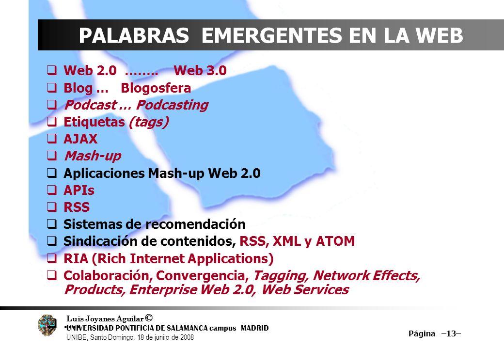 Luis Joyanes Aguilar © UNIVERSIDAD PONTIFICIA DE SALAMANCA campus MADRID UNIBE, Santo Domingo, 18 de juniio de 2008 Página –13– PALABRAS EMERGENTES EN