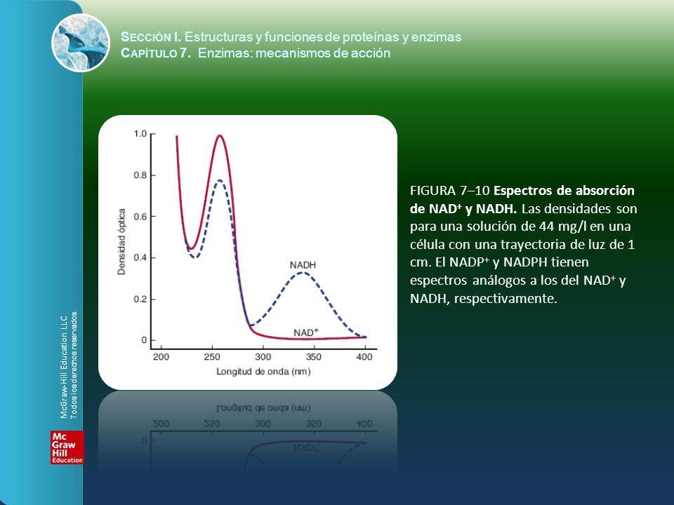 FIGURA 7–10 Espectros de absorción de NAD + y NADH. Las densidades son para una solución de 44 mg/l en una célula con una trayectoria de luz de 1 cm.