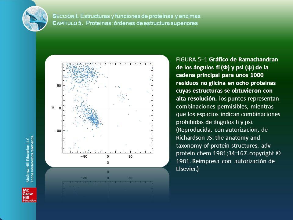FIGURA 5–1 Gráfico de Ramachandran de los ángulos fi (Ф) y psi (ψ) de la cadena principal para unos 1000 residuos no glicina en ocho proteínas cuyas e