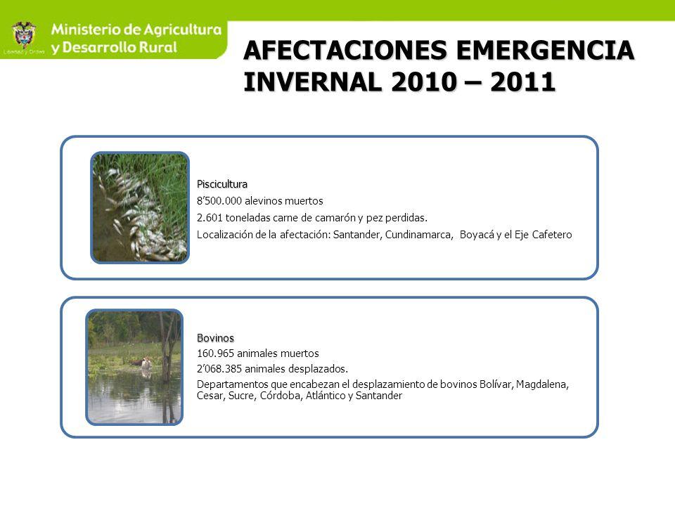 AFECTACIONES EMERGENCIA INVERNAL 2010 – 2011 Piscicultura 8500.000 alevinos muertos 2.601 toneladas carne de camarón y pez perdidas.