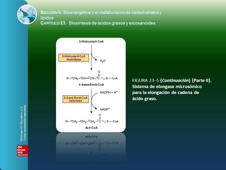 FIGURA 23–5 (Continuación) (Parte II). Sistema de elongasa microsómico para la elongación de cadena de ácido graso. S ECCIÓN II. Bioenergética y el me