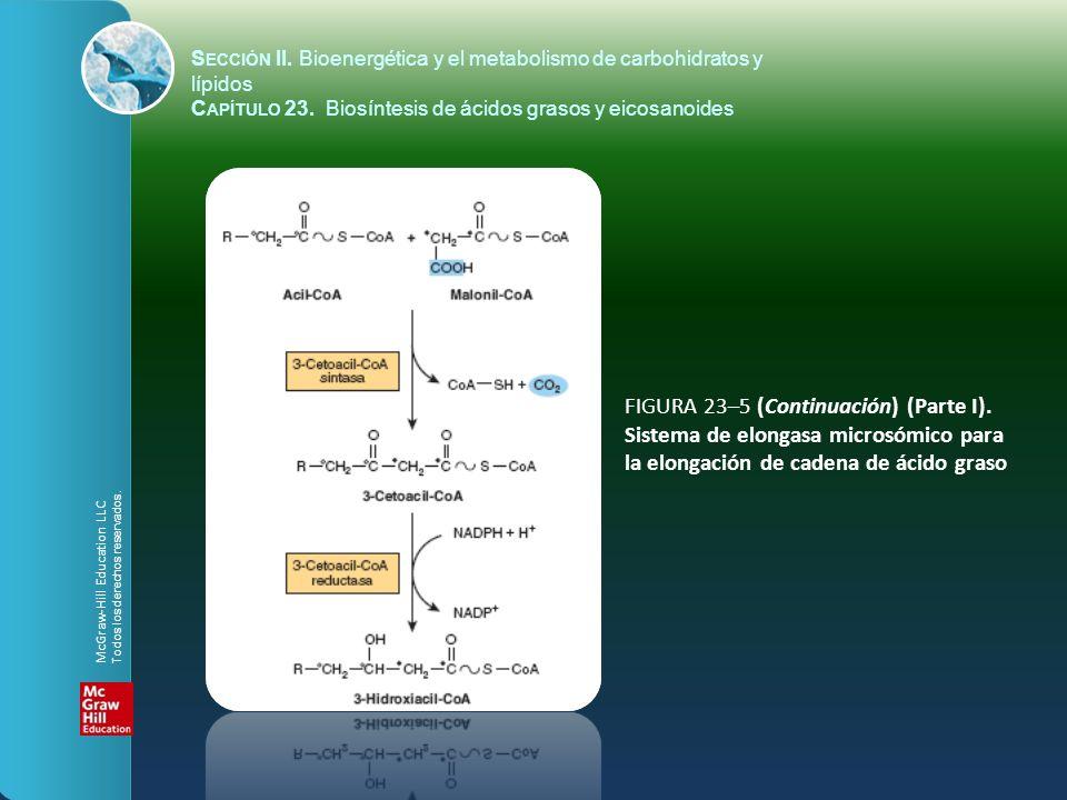 FIGURA 23–5 (Continuación) (Parte I). Sistema de elongasa microsómico para la elongación de cadena de ácido graso S ECCIÓN II. Bioenergética y el meta