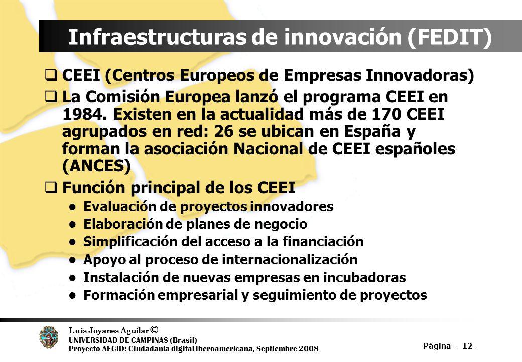 Luis Joyanes Aguilar © UNIVERSIDAD DE CAMPINAS (Brasil) Proyecto AECID: Ciudadania digital iberoamericana, Septiembre 2008 Página –12– Infraestructura