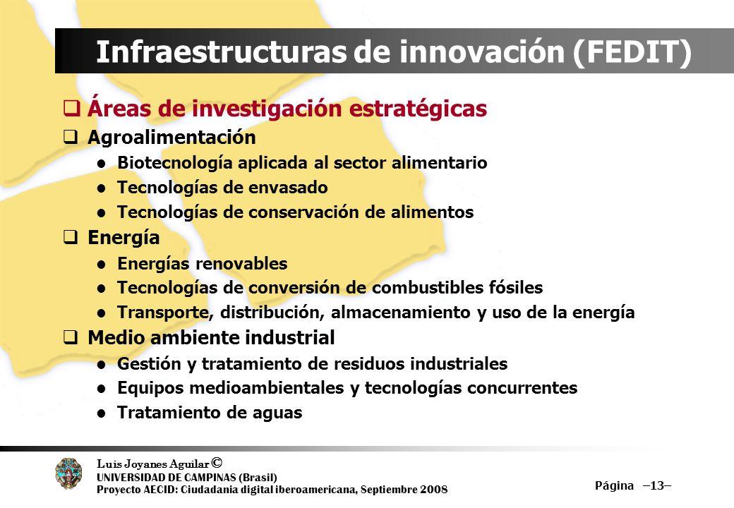 Luis Joyanes Aguilar © UNIVERSIDAD DE CAMPINAS (Brasil) Proyecto AECID: Ciudadania digital iberoamericana, Septiembre 2008 Página –13– Infraestructura