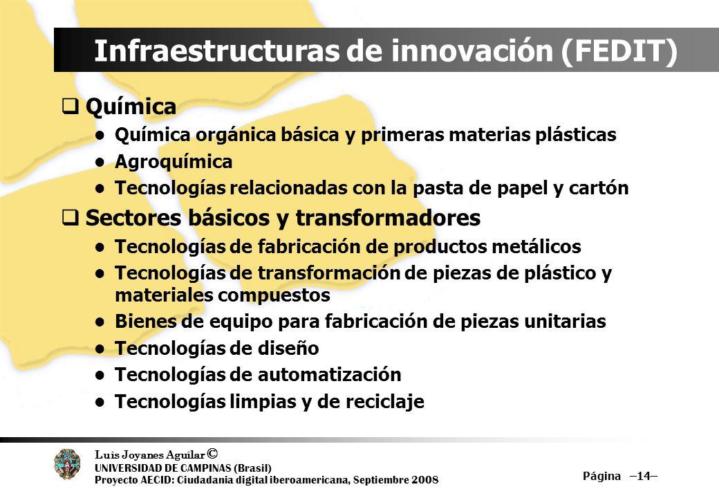 Luis Joyanes Aguilar © UNIVERSIDAD DE CAMPINAS (Brasil) Proyecto AECID: Ciudadania digital iberoamericana, Septiembre 2008 Página –14– Infraestructura