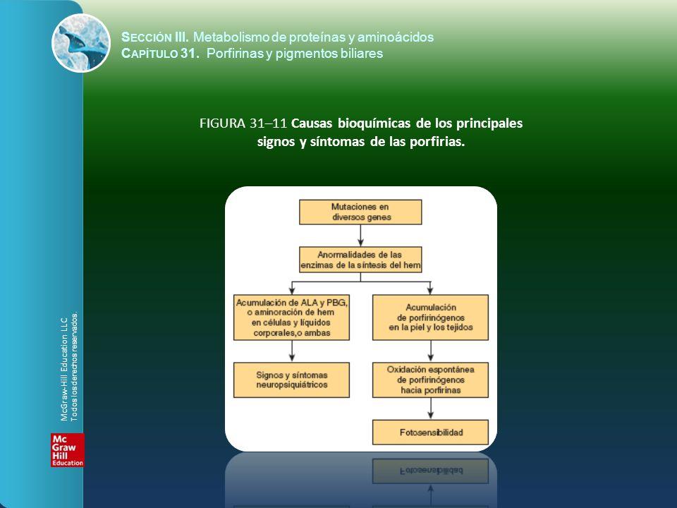 FIGURA 31–11 Causas bioquímicas de los principales signos y síntomas de las porfirias. S ECCIÓN III. Metabolismo de proteínas y aminoácidos C APÍTULO