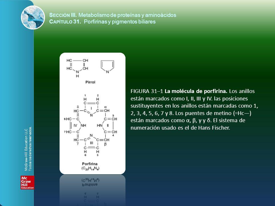 S ECCIÓN III. Metabolismo de proteínas y aminoácidos C APÍTULO 31. Porfirinas y pigmentos biliares FIGURA 31–1 La molécula de porfirina. Los anillos e