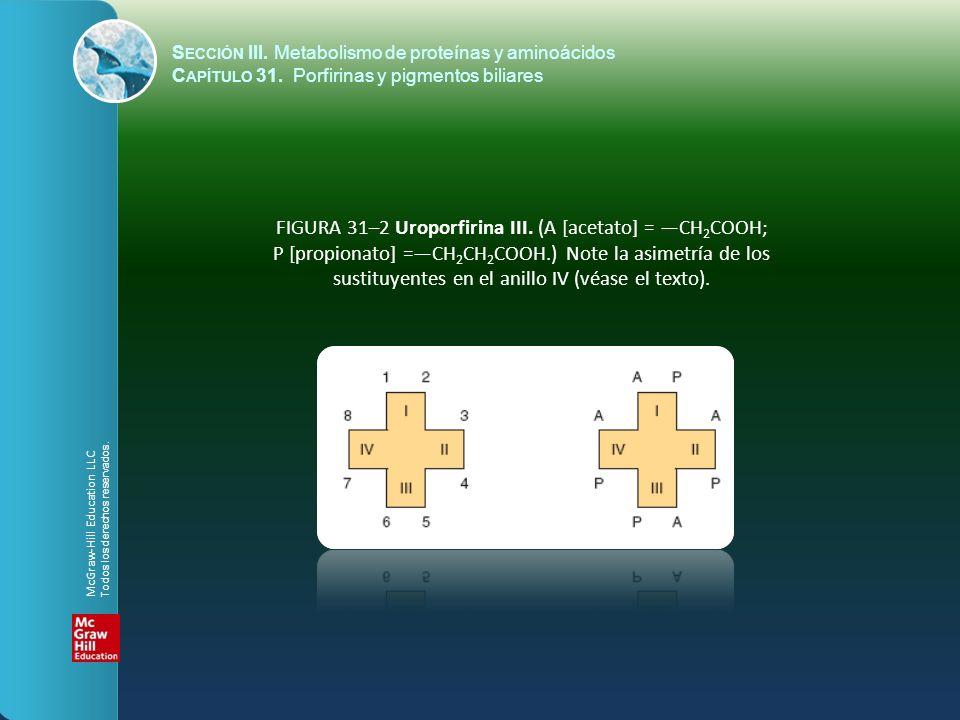 FIGURA 31–2 Uroporfirina III. (A [acetato] = CH 2 COOH; P [propionato] =CH 2 CH 2 COOH.) Note la asimetría de los sustituyentes en el anillo IV (véase