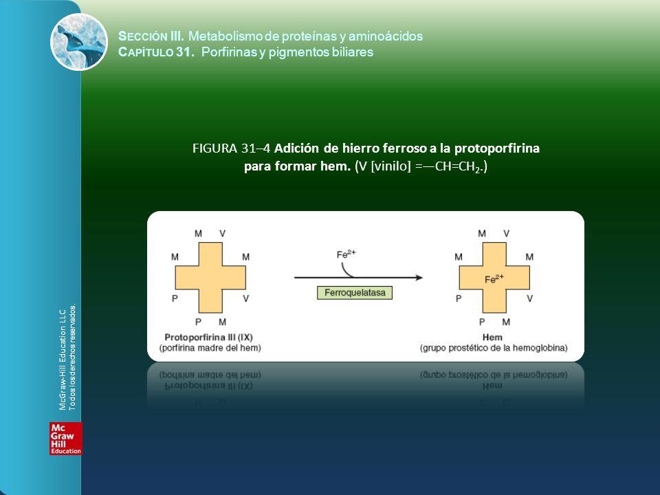 FIGURA 31–4 Adición de hierro ferroso a la protoporfirina para formar hem. (V [vinilo] =CH=CH 2.) S ECCIÓN III. Metabolismo de proteínas y aminoácidos