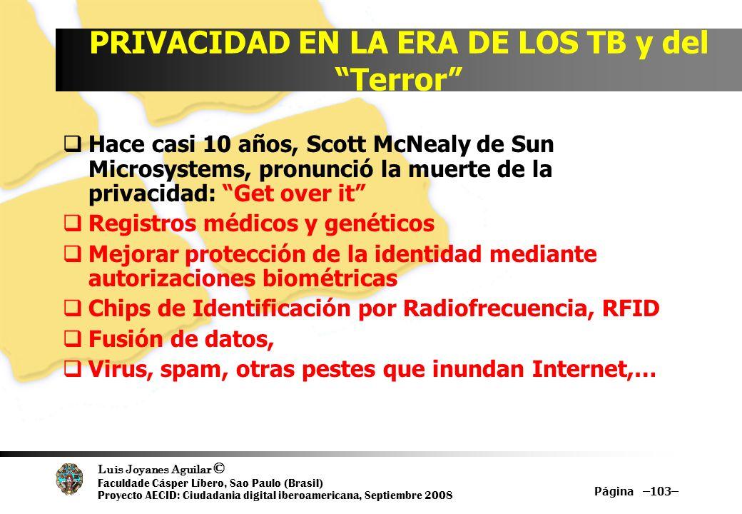 Luis Joyanes Aguilar © Faculdade Cásper Líbero, Sao Paulo (Brasil) Proyecto AECID: Ciudadania digital iberoamericana, Septiembre 2008 Página –103– PRI