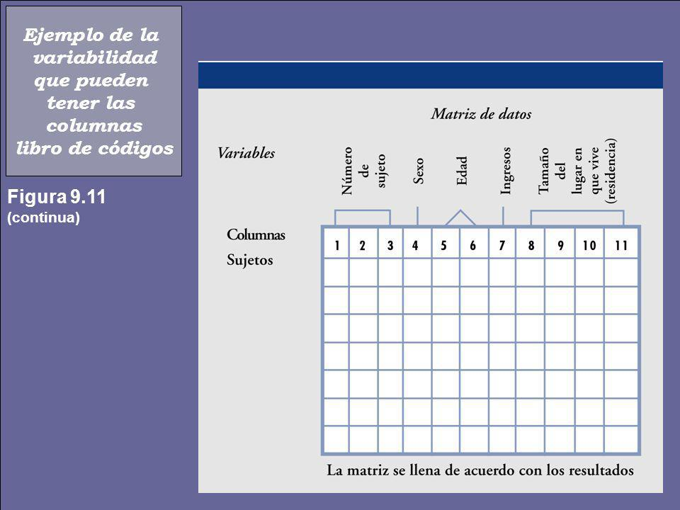 Ejemplo de la variabilidad que pueden tener las columnas libro de códigos Figura 9.11 (continua)