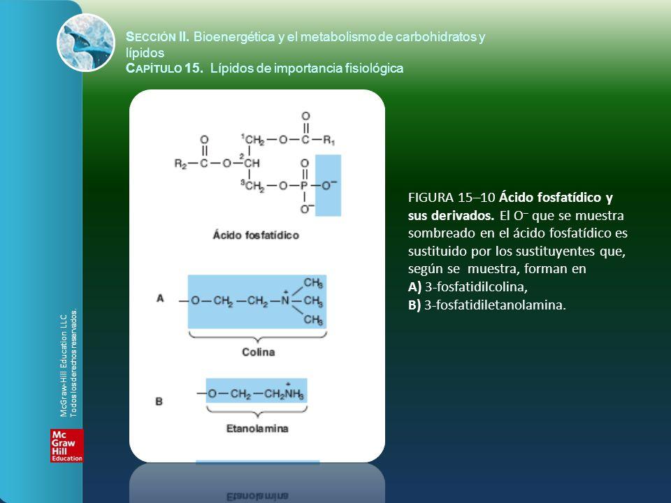 FIGURA 15–10 Ácido fosfatídico y sus derivados. El O – que se muestra sombreado en el ácido fosfatídico es sustituido por los sustituyentes que, según